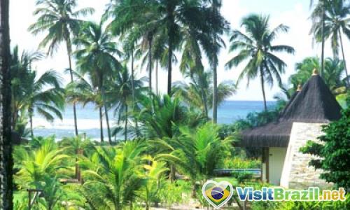 Kiaroa Luxury Eco Resort